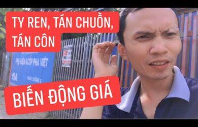 20/04/2021 Ty ren tán chuồn tán côn có biến động tại Cốp Pha Việt