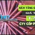 Kích tăng giàn giáo  Coppha Việt TP Hồ Chí Minh  || Phụ kiện và cốp pha việt